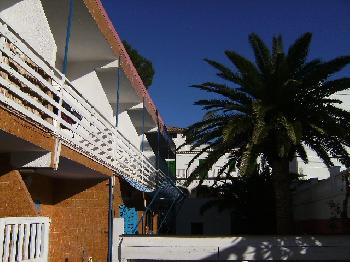 Hotel, Pension hp10461 in Paguera