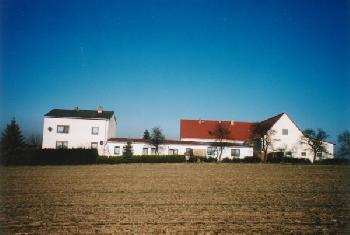 Hotel, Pension hp11806 in Niederau  (Jessen)