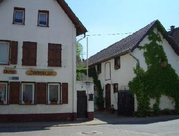 Hotel, Pension hp4557 in Dorn-Dürkheim